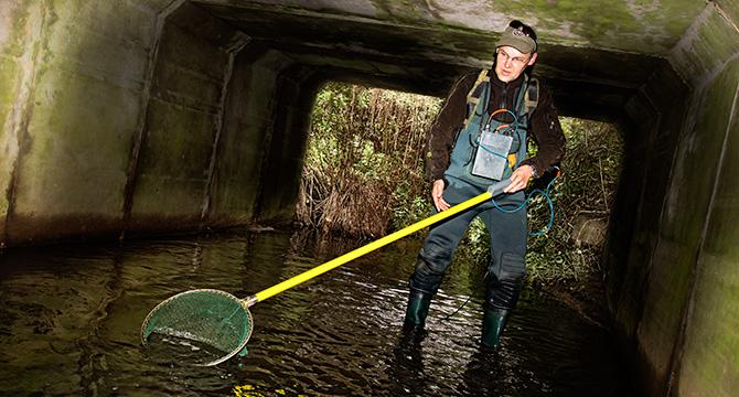 Fotoreportage zeigt das Elektrofischen im Auftrag des Landesjägerverband Niedersachsen