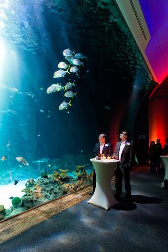 Eventfotografie während einer Festveranstaltung vor dem Aquarium des Hagenbecker Tierparks in Hamburg