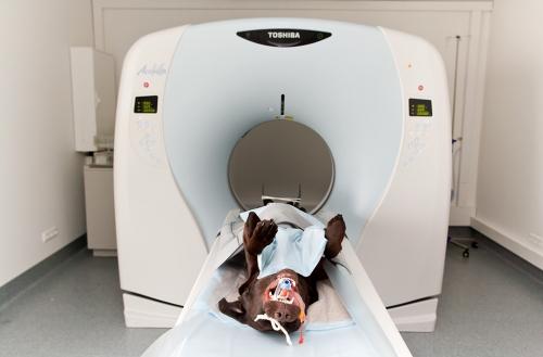 Werbefoto zeigt die moderne Technik in einer Tierklinik bei Hamburg